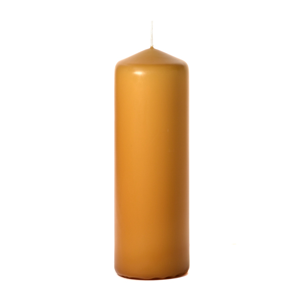 3x9 Harvest Pillar Candles Unscented