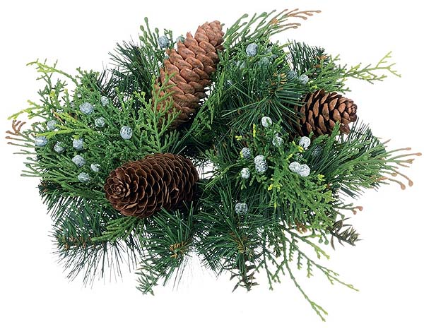 Mixed Pine Candle Rings 2 Inch