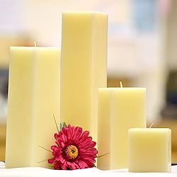 Ivory Square Candles 12 Inch