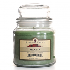 16 oz Arugula Jar Candles