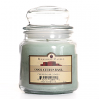16 oz Cool Citrus Basil Jar Candles