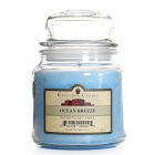 16 oz Ocean Breeze Jar Candles