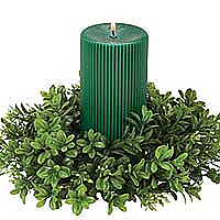 Boxwood 4 Inch Candle Rings