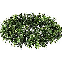 Boxwood 6.25 Inch Candle Rings