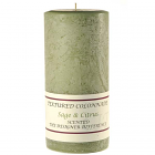 Textured 3x6 Sage and Citrus Pillar Candles