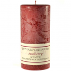 Textured 4x9 Mulberry Pillar Candles