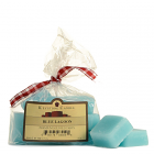 Blue Lagoon Scented Wax Melts Bag of 10