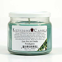 5 oz Eucalyptus Soy Jar Candles