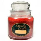 16 oz Christmas Essence Jar Candles